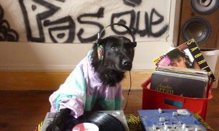 hip-hop & pas que (11 Janvier 2015)