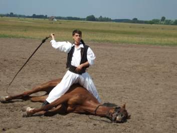 Jumelages actus 6 : La Hongrie et les Diois