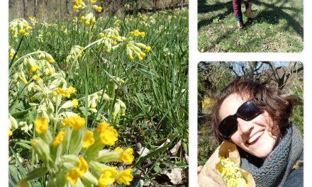 Les Ateliers de Mélisande : au printemps et tout au long de l'année
