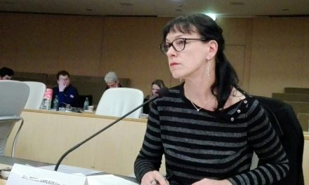 Corinne Morel Darleux : Rapport de l'Assemblée plénière régionale du 16 décembre 2016