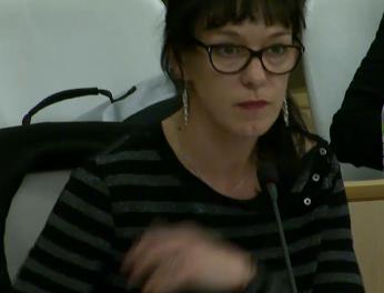 Corinne Morel Darleux : Rapport de l'Assemblée plénière régionale du 17 novembre 2016