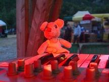De passage au Psychobydub Festival 2010 !