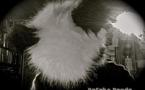 Electrolyse 025 : Special Dafake Panda