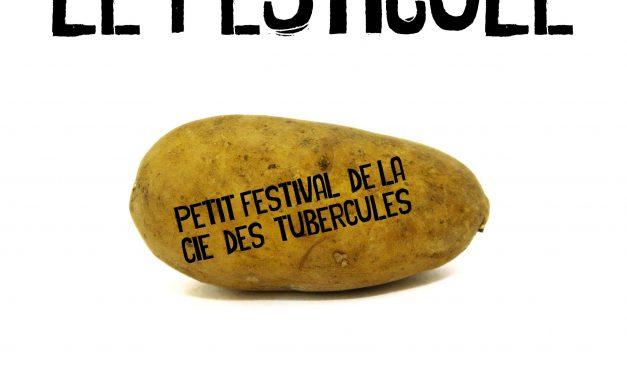 Le retour du Festicule, festival à Lus-la-croix-haute !
