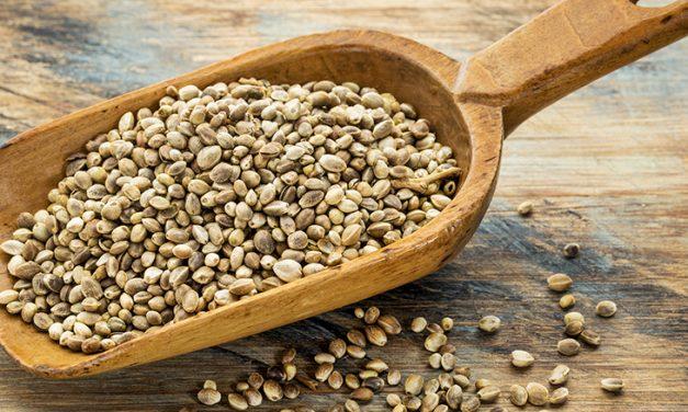 Troc de graines et actu des Potagers Rares !