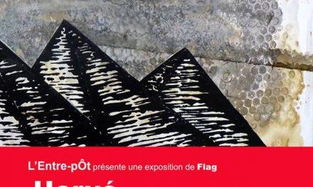 Flag expose à l'Entre-pôt !