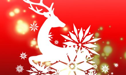 Marché de Noël des commerçants
