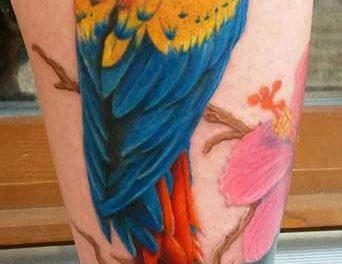 Nantas tatoo studio