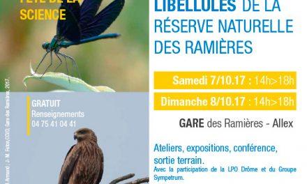Oiseaux et libellules de la Drôme