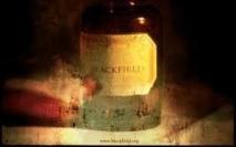 live addict 051
