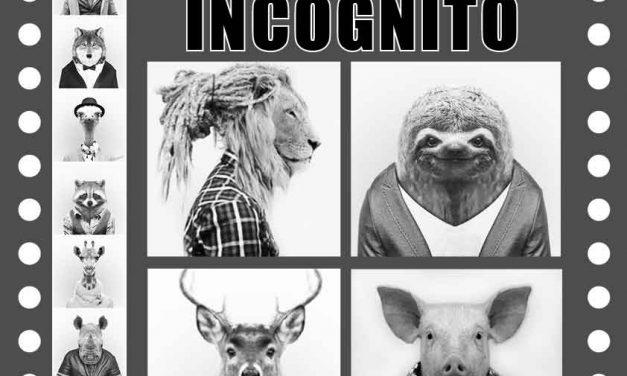 Soirée Incognito aux Agités du Local !!
