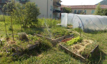 Les Jardins partagés de l'Aube