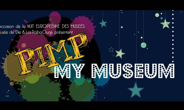 Pimp My Museum : La nuit Européenne des Musées
