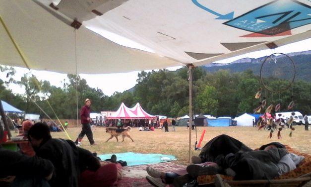 On n'est pas bien là, décontractés : Festival Psychobydub, impressions & rencontres (3)