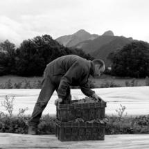 Denis Lebioda, photographe agricole