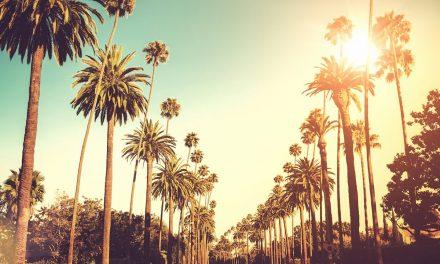 A LA RECHERCHE DU GROOVE PERDU (254) California Dreamin' (cover time is coming)