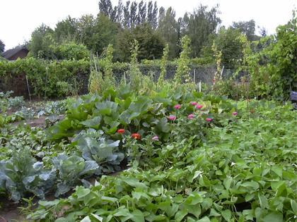 Fête des jardins familiaux du quartier de l'Aube