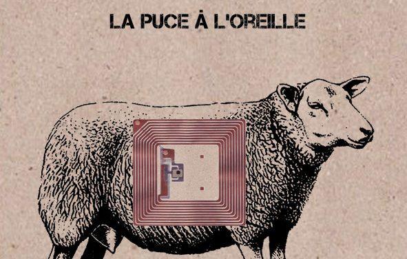 Jean-Louis Meurot : le fichage Ovin-Humain