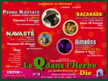 Le Q dans l'Herbe : 4 concerts au Jardin du Perrier à Die en Juillet Aout 2012