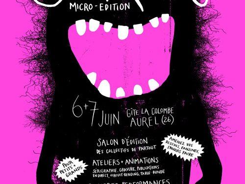 Seribo, rencontre de micro édition à Aurel