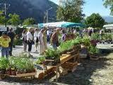 La fête des plantes rares à Châtillon en Diois