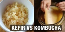 Racontes Moi Des Salades : Kefir et Kombucha, vive les boissons fermentées!