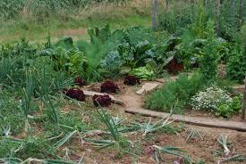 Biotop [113] : S'installer en agriculture en 2014, une gageure ?