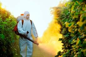 Biotop [127] : Cultiver sans pesticides ?Copie de Article à dupliquer