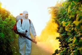 Biotop [127] : Cultiver sans pesticides ?Copie de Article à dupliquer