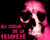 Été Coton-Tige : Au Cœur De La Tempête/ Radio Zinzine