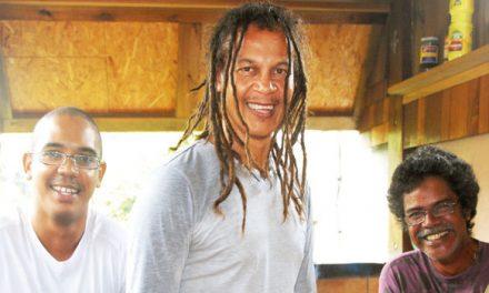 A LA RECHERCHE DU GROOVE PERDU (141) musique de la Réunion vol4 reggae et maloggae