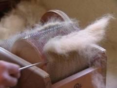 Biotop [154] : Une filière laine locale, utopie ou réalité ? (2)