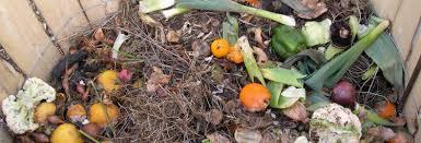 Compost / Mapuche