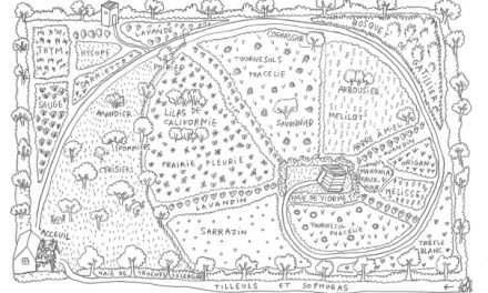 Le Jardin bleu d'OlivierAC de Sépibus