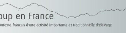 «Plan Loup» avec Guillaume Thirard, Sous-Préfet de Die