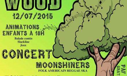 « Zik In Wood » à Marignac, avec Moonshiners !!