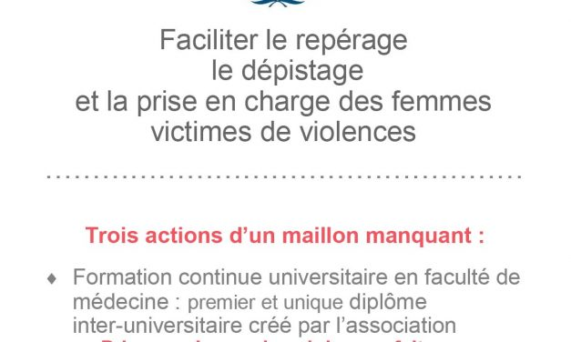 Etat sur les violences faites aux femmes par Perrine Millet
