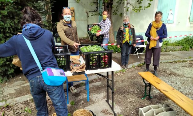 Paniers des Producteurs du Diois distribués à l'ESCDD