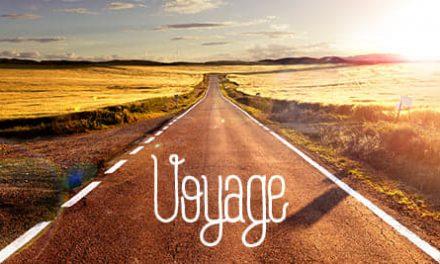 Free Like Art #8 : Génération Voyage