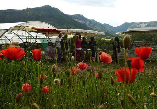 A la ferme de Ruinel, un super marché de bonheur.