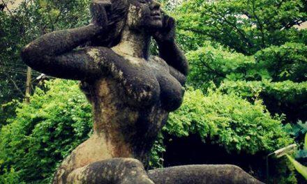 La danse de la Yakshi des bois