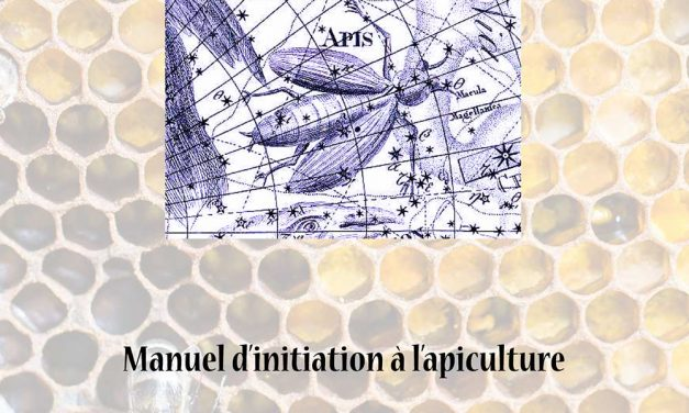 La constellation de l'abeille