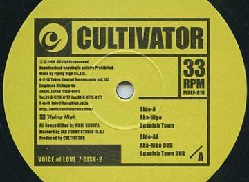 A LA RECHERCHE DU GROOVE PERDU (370) Reggae made in Japan 4