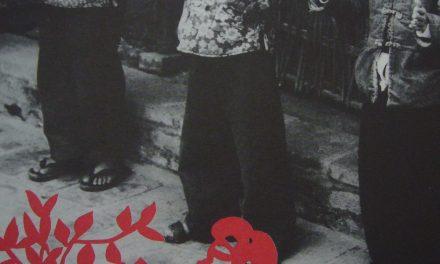 La pensée des peuples 28 : Contes et poèmes vietnamien