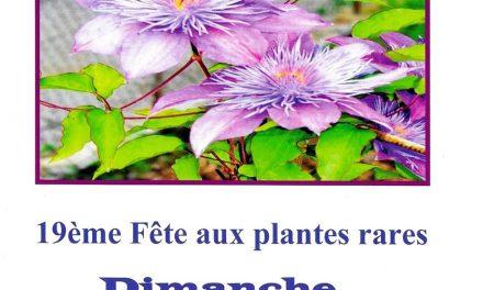 Fête des plantes rares