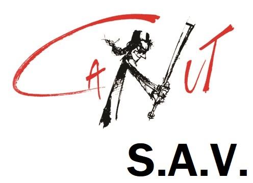 Été Coton-Tige : S.A.V./ Radio Canut