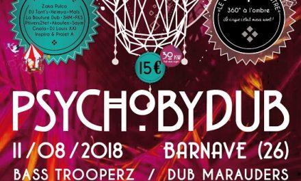 Meltin' Dub (437) : Psychobydub Festival 10 ans !
