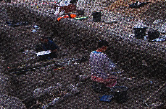 Bilan des fouilles archéologiques menées dans le Diois en 2013
